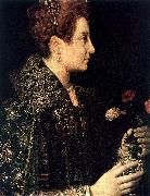 ANGUISSOLA  Sofonisba Profile Portrait of a Young Woman oil painting