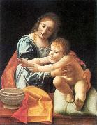 BOLTRAFFIO, Giovanni Antonio The Virgin and Child fgh oil painting