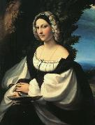 CORNELISZ VAN OOSTSANEN, Jacob Portrait of a Gentlewoman df oil painting picture wholesale