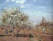 Camille Pissaro Orchard in Bloom at Louveciennes oil painting picture wholesale