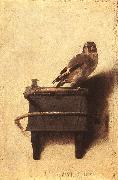 FABRITIUS, Carel The Goldfinch dfgh oil painting