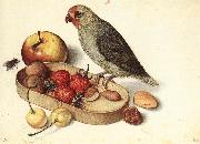 FLEGEL, Georg Still-Life with Pygmy Parrot dfg oil painting picture wholesale