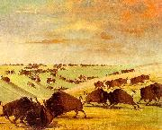 George Catlin Buffalo Bulls Fighting in Running Season-Upper Missouri oil painting picture wholesale