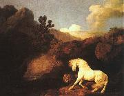 George Stubbs A Horse Frightened by a Lion oil painting