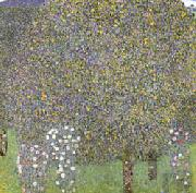 Gustav Klimt Rose Bushes Under the Trees oil painting picture wholesale