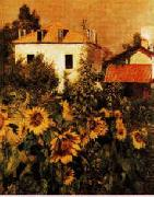Gustave Caillebotte Sunflowers, Garden at Petit Gennevilliers oil painting