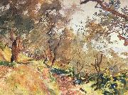 John Singer Sargent Trees on the Hillside at Majorca oil painting picture wholesale