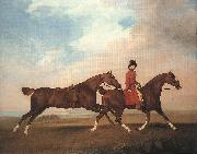 William Anderson with Two Saddle-horses er