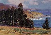 Anna Hills July Afternoon,Laguma Beach oil painting