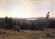 Landscape of the Forest
