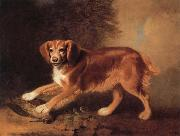 A Celebrated spaniel,the property of colonel joliffe,in a landscape with a woodcock