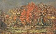 Edge of the Woods,Cherry Tress in Autumn