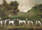 George Stubbs Some Dogs