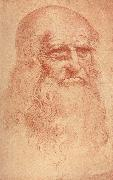 LEONARDO da Vinci Self Portrait oil painting reproduction