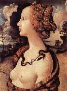 Portrat of Simonetta Vespucci