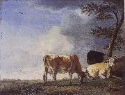POTTER, Paulus Three Cows in a Pasture