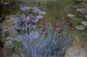 Claude Monet Irises and Water Lillies oil painting reproduction