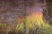 Claude Monet Water Lilies at Sunset oil painting reproduction