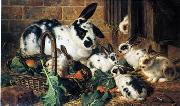 unknow artist Rabbits 198