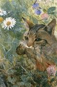 unknow artist Cats with fagelunge in mouth oil painting reproduction