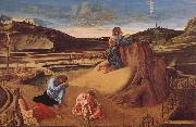 Giovanni Bellini Christ in Gethsemane oil painting reproduction