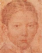 Head-Portrait of Young boy