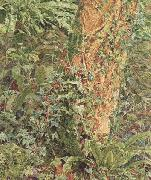 Albert Joseph Moore,ARWS Study of an Ash Trunk (mk46) oil painting
