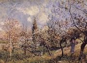 Alfred Sisley Orchard in Sping-By oil painting reproduction