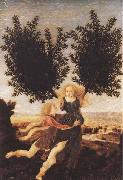 Antonio del Pollaiuolo Apollo and Daphne (mk45) oil painting picture wholesale