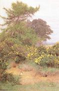 George Marks At the Edge of Shere Heath (mk46) oil painting