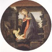 Madonna in Adoration of the Christ Child