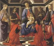 Madonna enthroned with Child and Saints (Mary Magdalene,John the Baptist,Cosmas and Damien,Sts Francis and Catherine of Alexandria)