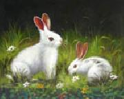 unknow artist Rabbit oil painting reproduction