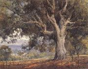 unknow artist Oak Tree oil painting reproduction
