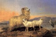 A Ewe with Lambs and A Heron Beside A Loch