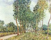 Alfred Sisley Ufer der Loing bei Moret oil painting reproduction
