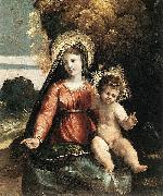 Dosso Dossi Madonna and Child oil painting reproduction