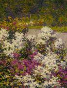 Hugh Henry Breckenridge White Phlox oil painting artist
