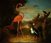 Jakob Bogdani Flamingo and Other Birds in a Landscape oil painting