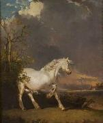 A horse in a landscape startled by lightning