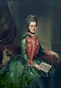 Johann Georg Ziesenis Portrait of Princess Frederika Sophia Wilhelmina oil painting