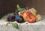 unknow artist Still Life of Fruit oil painting on canvas
