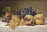 A Still Life with Peaches and Grapes on a Marble Ledge