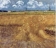 Vincent Van Gogh Wheat Field oil painting reproduction