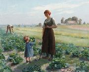 Aime Perret The lettuce patch oil painting
