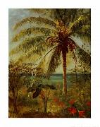 Palm Tree, Nassau by Albert Bierstadt