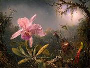 Martin Johnson Heade Cattleya Orchid and Three Hummingbirds oil painting reproduction