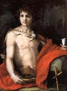 Andrea del Sarto The Young St.John oil painting reproduction