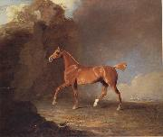 Benjamin Marshall A Golden Chestnut Racehorse by a Rock Formation With a Town Beyond