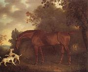 A Bay Hunter and Two Hounds in A Wooded Landscape